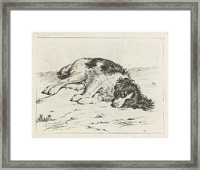 Sleeping Dog, Hendrik Godart De Marée Framed Print by Artokoloro