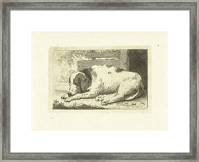 Sleeping Dog, Johannes Van Cuylenburgh Framed Print by Artokoloro