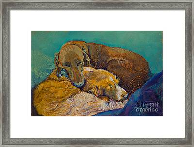 Sleeping Double In A Single Bed Framed Print by Tracy L Teeter