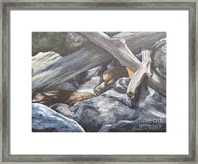 Sleeping Lion Framed Print by Laurianna Taylor
