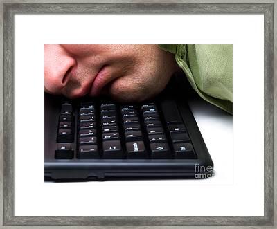 Sleeping On The Job  Framed Print by Sinisa Botas