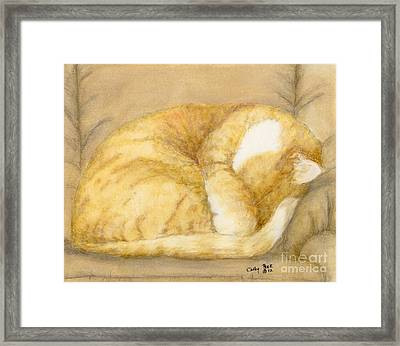 Sleeping Orange Tabby Cat Feline Animal Art Pets Framed Print by Cathy Peek