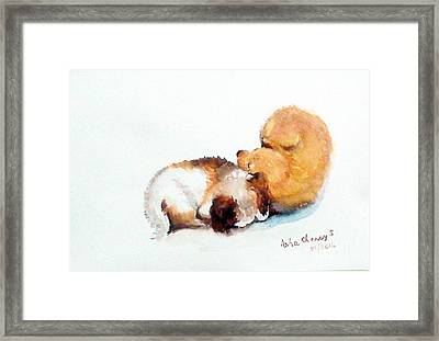 Sleeping Puppies Framed Print