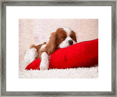 Sleeping Puppy On Red Pillow Framed Print