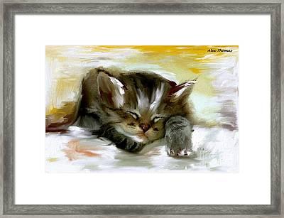 Sleepy Kittie  Framed Print by Alex Thomas