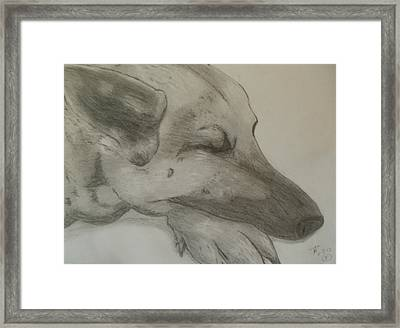 Framed Print featuring the drawing Sleepy Shepherd by Thomasina Durkay