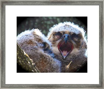 Sleepy Time Framed Print by AnnaJo Vahle