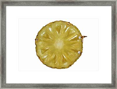 Slice Of Pineapple, Backlit Framed Print