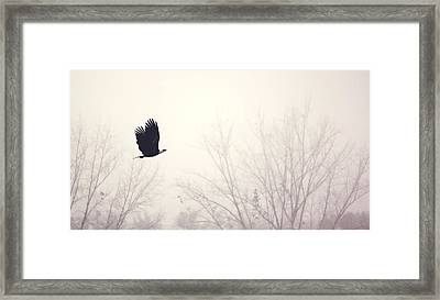 Slicing Through The Fog Framed Print by Melanie Lankford Photography