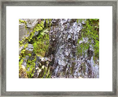 Framed Print featuring the photograph Slick Rock by Laurie Tsemak