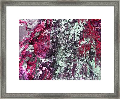Framed Print featuring the photograph Slick Rock Red by Laurie Tsemak