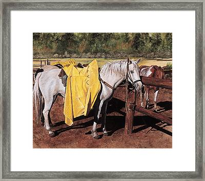 Slicker Framed Print