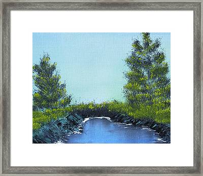 Slickrock Pond Framed Print by Jennifer Muller
