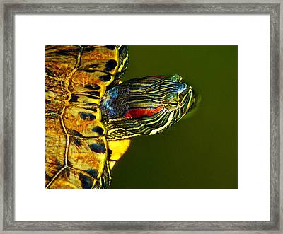 Slider Framed Print