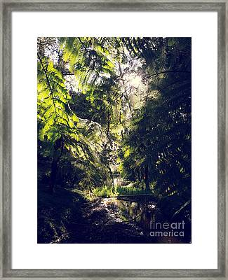 Framed Print featuring the photograph Slight Tremble by Rushan Ruzaick