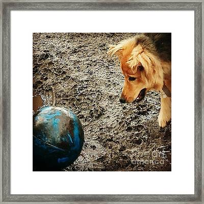 Slightly Abstract.... #dogs Framed Print