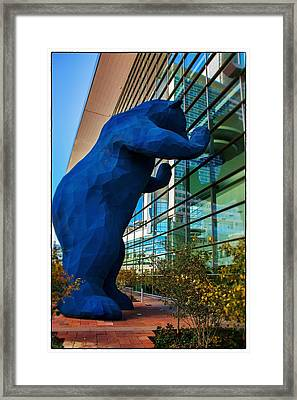 Slightly Blurry Denver Bear Framed Print