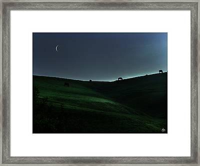 Sliver Of Light On The Pasture Framed Print by Wayne King