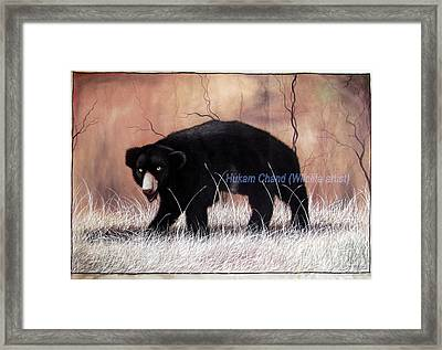 ''sloth Bear In Hunting Position'' Framed Print by Hukam Chand Wildlife artist