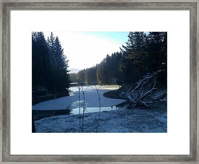 Slough Framed Print by Susan Mumma