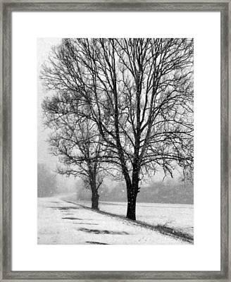 Slow Going I Framed Print by Julie Dant
