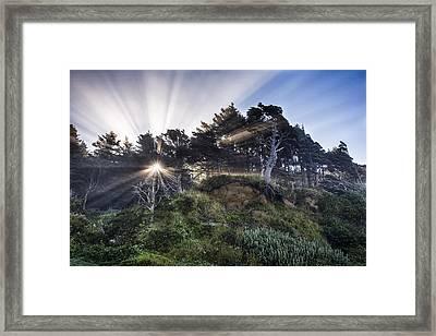 Slow The Light Framed Print
