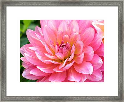 Slowly Her Dress Dropped To The Floor Framed Print by Derek Dean