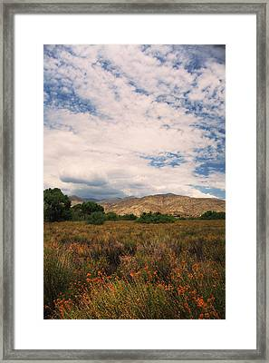 Slowly I Tread Framed Print by Laurie Search
