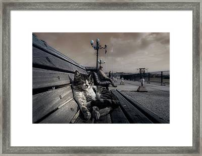 Sluggard Framed Print