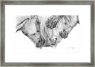 Slumber Party Framed Print by Elizabeth Sage