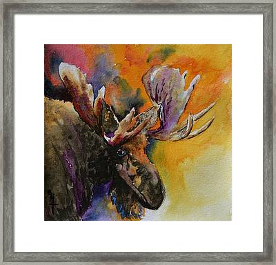 Sly Moose Framed Print by Beverley Harper Tinsley