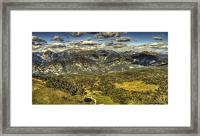 Small And Free Like A Bird Framed Print