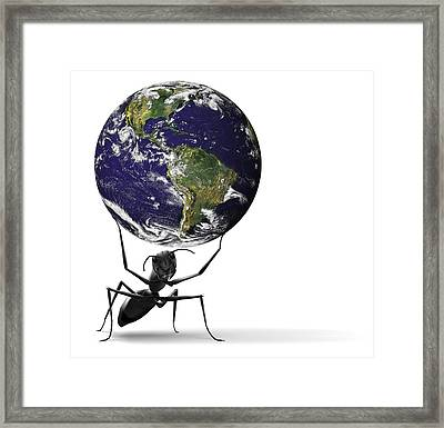 Small Ant Lifting Heavy Blue Earth Framed Print