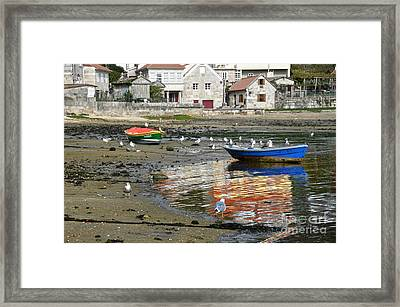 Small Boats And Seagulls In Galicia Framed Print by RicardMN Photography