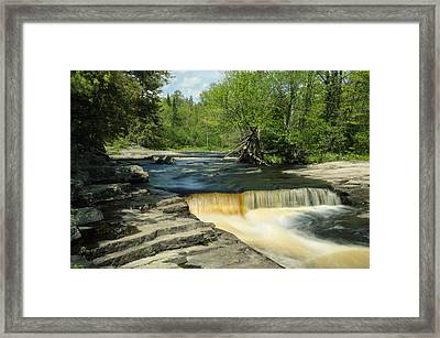 Small Fall Framed Print