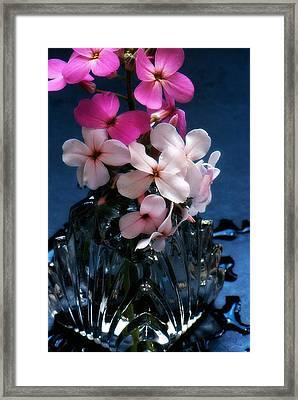 Small Flowers Framed Print by Michael Dohnalek