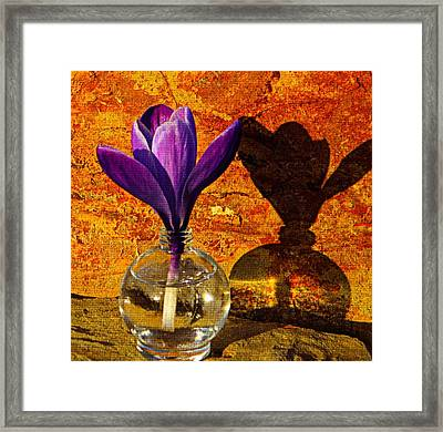 Small Giant Framed Print by Chris Berry