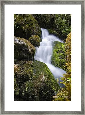 Small Stream Framed Print by William H. Mullins