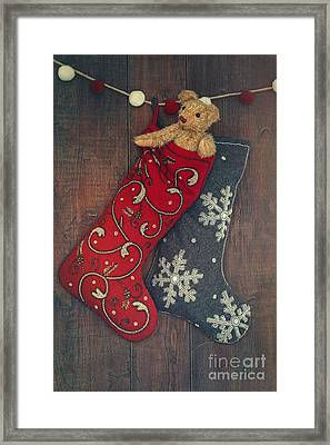 Small Teddy Bear In Stocking For Christmas Framed Print
