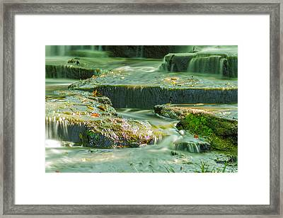Small Things Framed Print