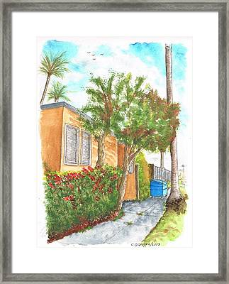 Small Trees In Homewood Ave - Hollywood - California Framed Print