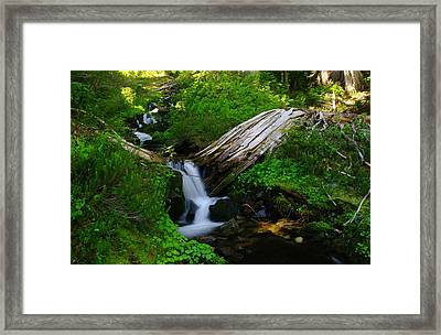 Small Water N The Green Framed Print by Jeff Swan
