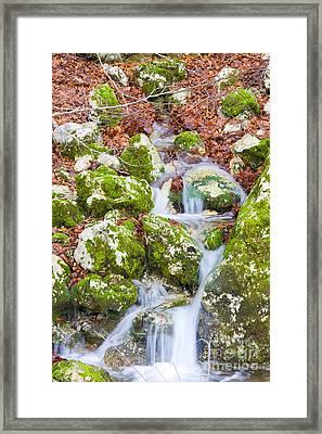 Small Waterfall Framed Print by Gabriela Insuratelu