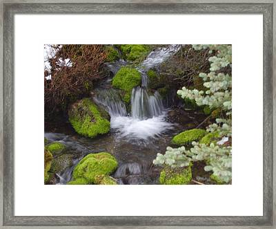 Small Waterfalls Framed Print by Yvette Pichette