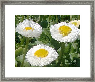 Small White Faces Framed Print