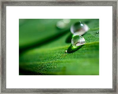 Small World Framed Print by Jon Woodhams