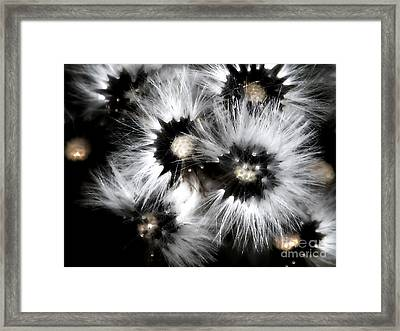 Small Worlds Framed Print by Rory Sagner
