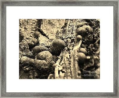 Small Worlds Framed Print
