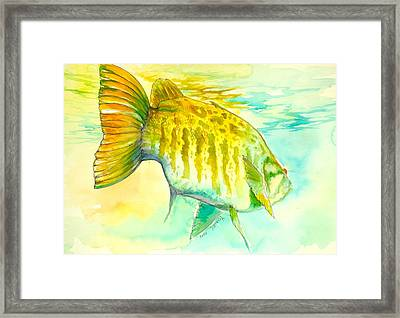 Smallie Patrol Framed Print
