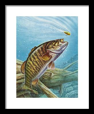 Bass Framed Prints